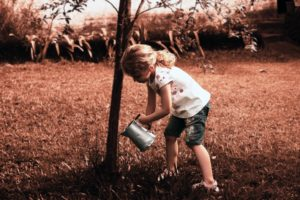 Enfant qui fertile un arbre